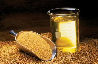 Soybeans, oil, and meal. Image from the  United Soybean Board via Flickr.
