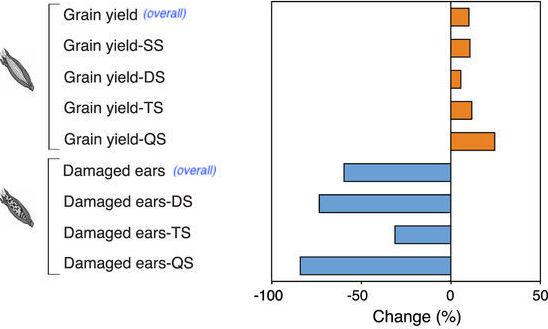 modified 3a ge corn meta analysis